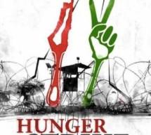 Aktîvîstên aştiyê li ber girtîgeha Amedê ketin greva birçîbûnê