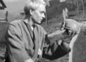 Hamlet dîsa dibêje: 'Hebûn an nebûn'